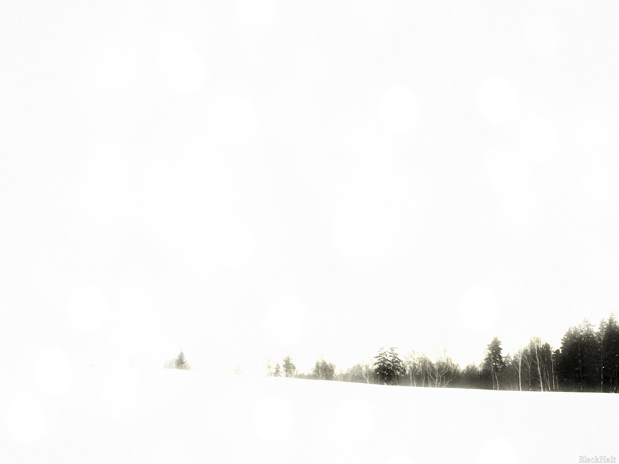Balts balts