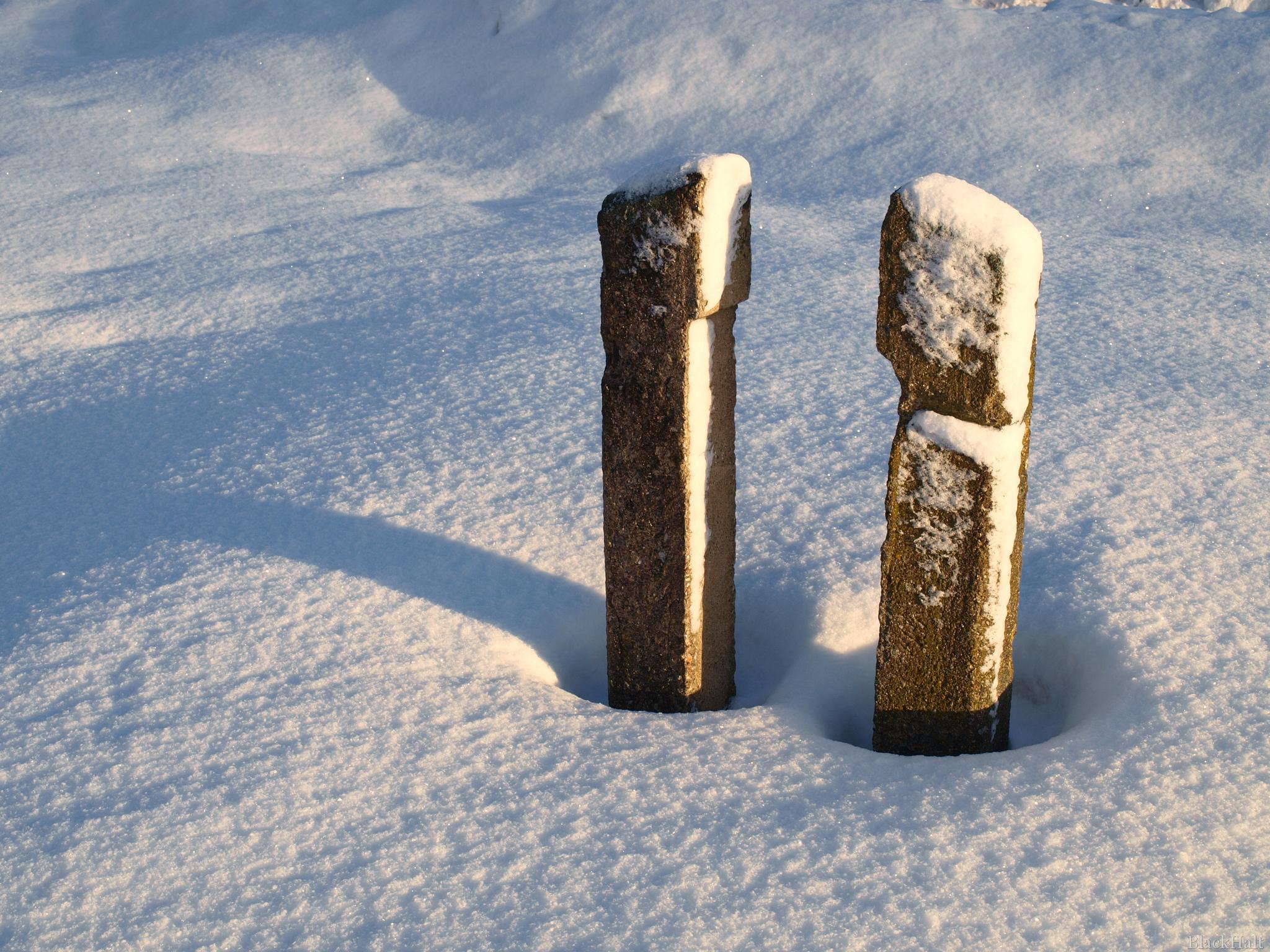 Divi sniegā