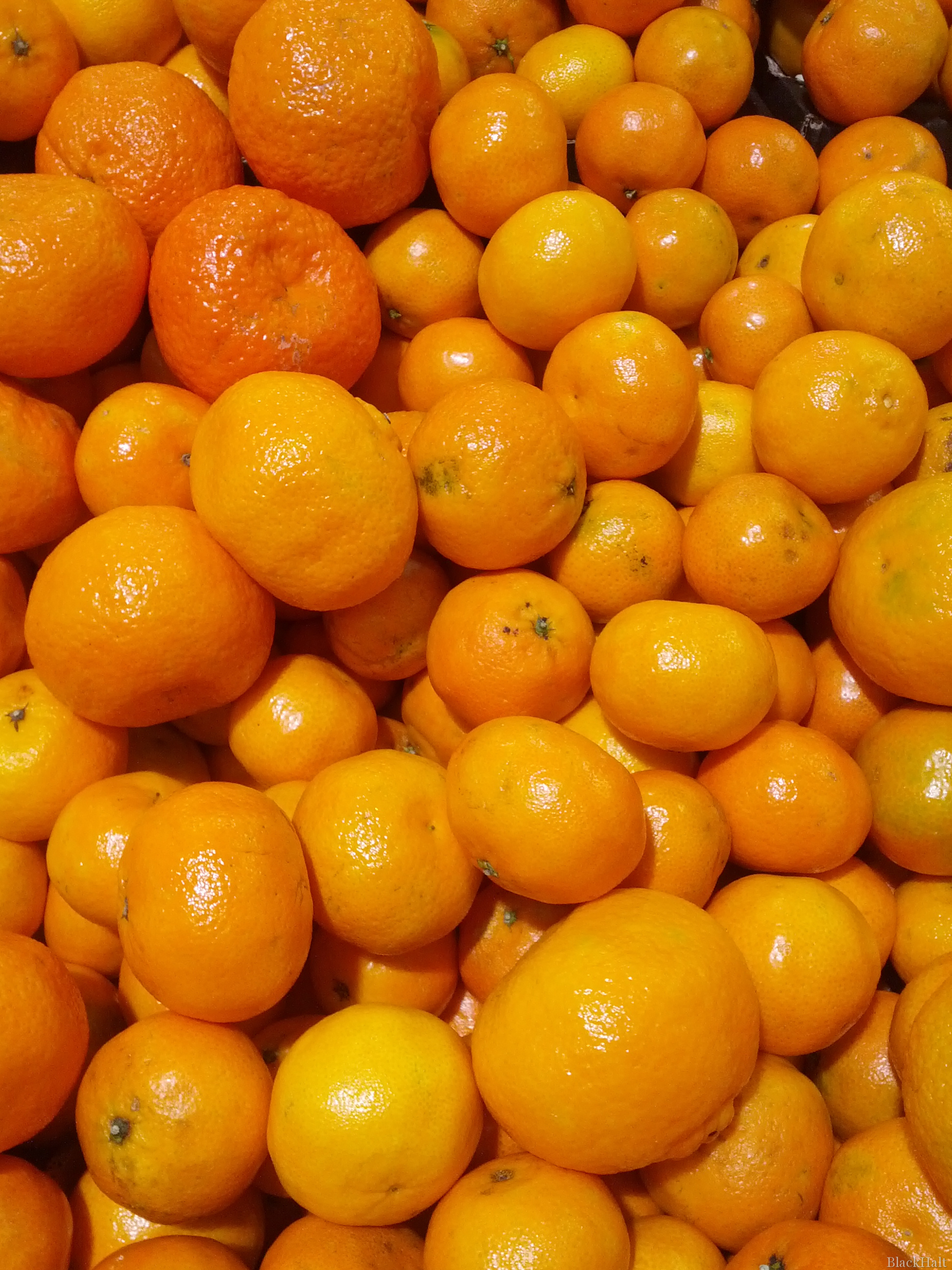 Mandarīni