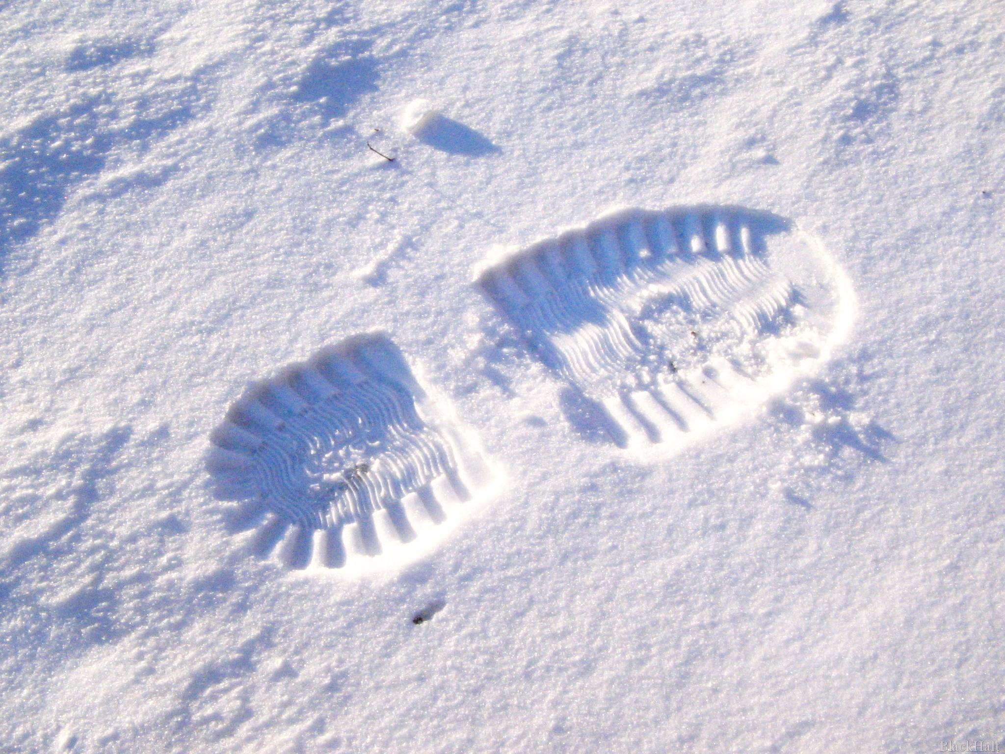 Pēda sniegā