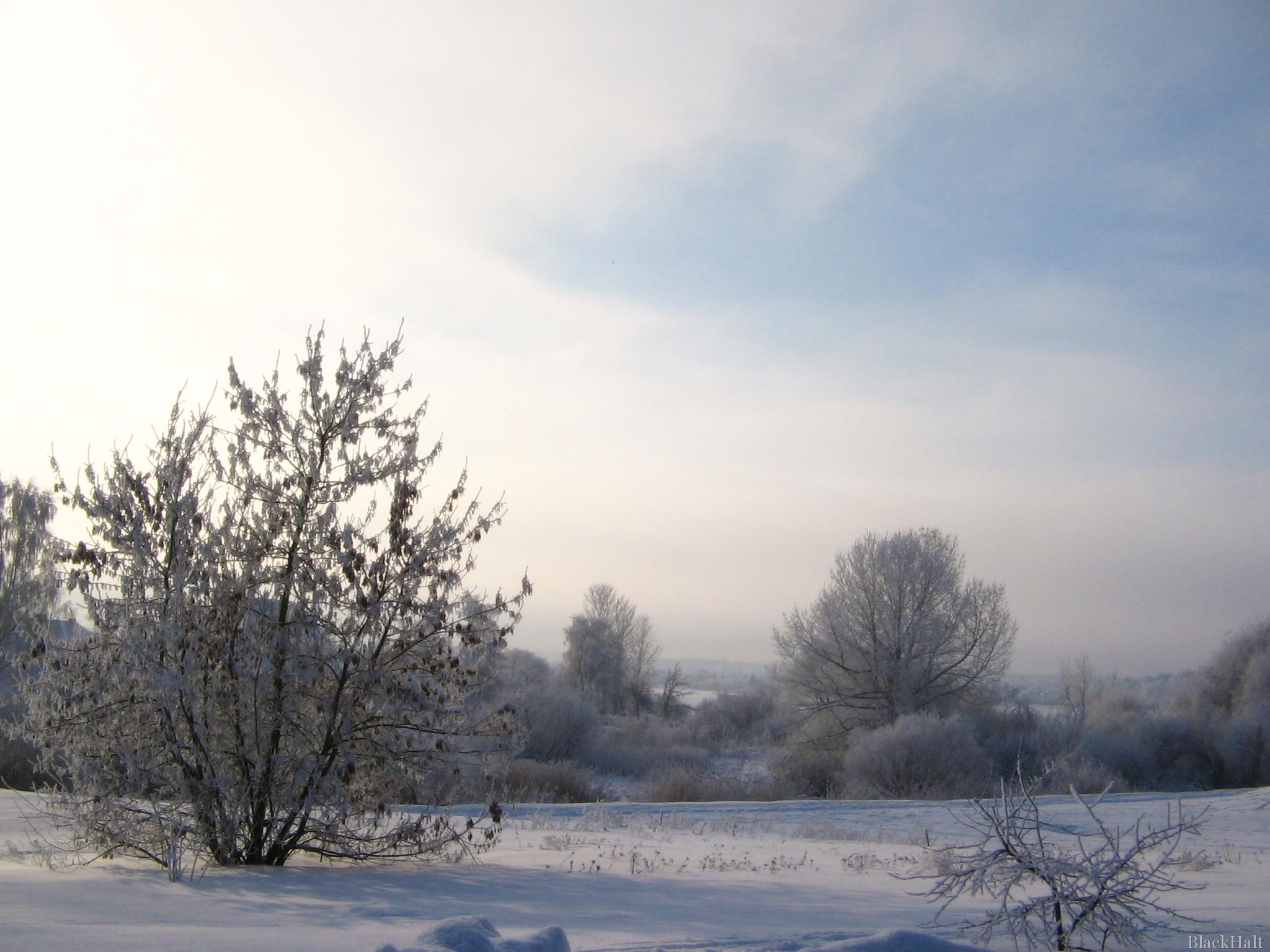 Sniegota ainava