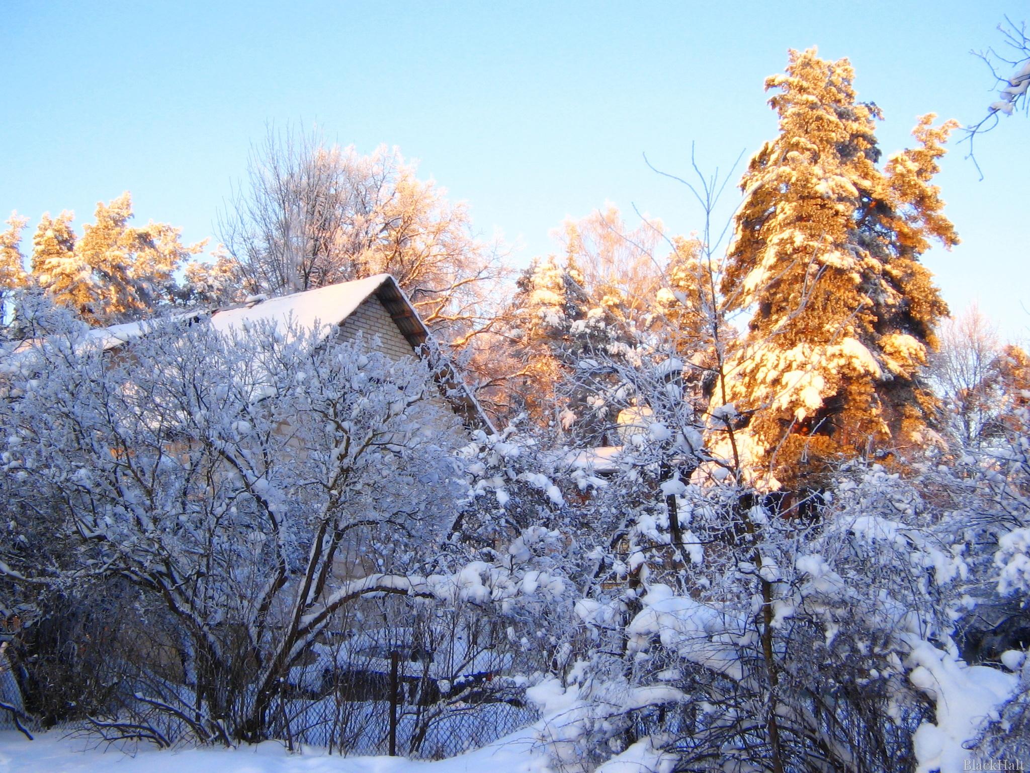 Sniegots skats