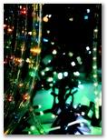Egļu gaismiņas