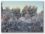 Sniegots skats #2
