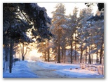 Sniegots skats #3